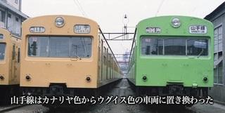 101系黄緑.jpg